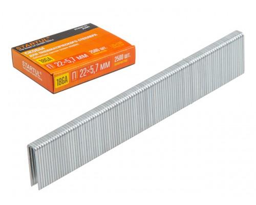 Скобы тип 18GA 19мм (2500шт) STARTUL PROFI (ST4520-19) (для пневмостеплера, сечение 1,25х1,00мм; ширина скобы 5,7мм)